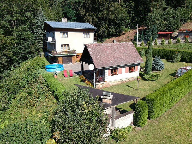 Chalet with pool Jizera, holiday rental in Lisny