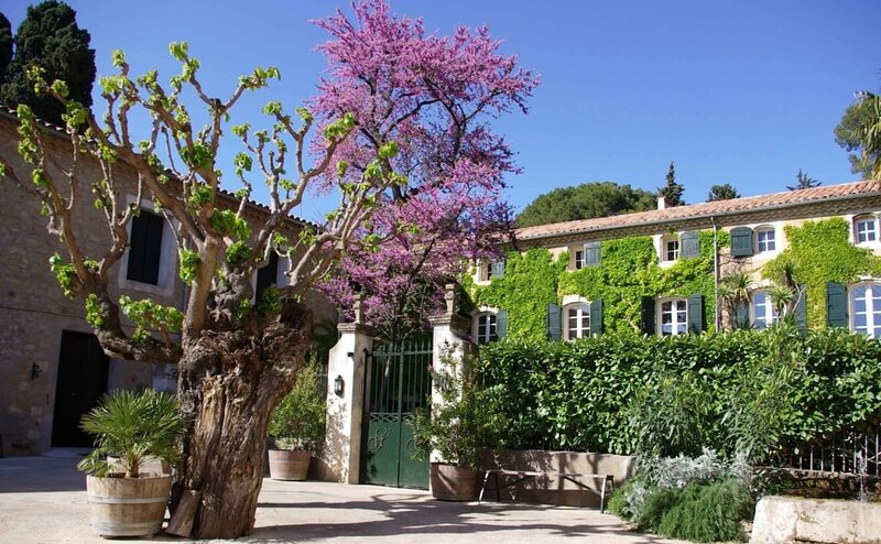 Villa Languedoc Terroir, vacation rental in Usclas-d'Herault