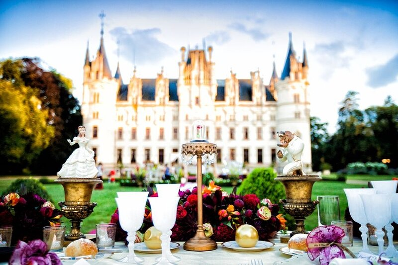 Chateau Fairytale, vacation rental in Segre-en-Anjou Bleu