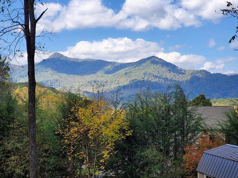 Wakulla Woods Retreat, holiday rental in Waynesville