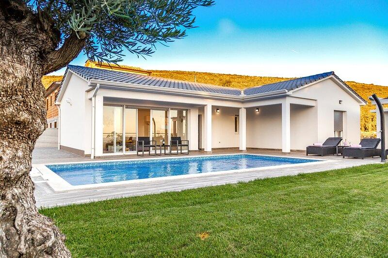 Elegant Villa La Vita with an outdoor pool, holiday rental in Viskovici
