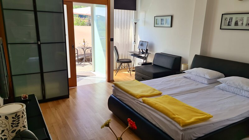 Apartments Sanja - Studio apartment, vacation rental in Krapinske Toplice