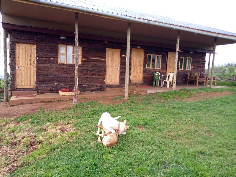 The Wonky House, alquiler de vacaciones en Provincia del valle del Rift