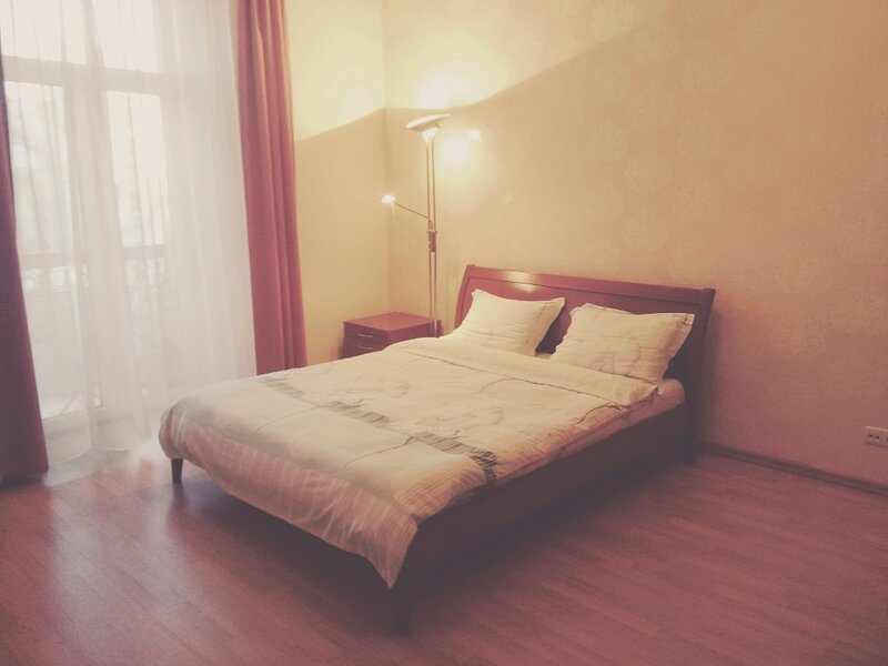 Apartment in centre of Kyiv/Kiev, on Golden Gates, vacation rental in Irpin