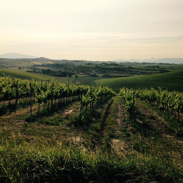 STUNNING VIEWS OF THE TUSCAN LANDSCAPE-SAN GIMIGNANO, location de vacances à Castelfalfi