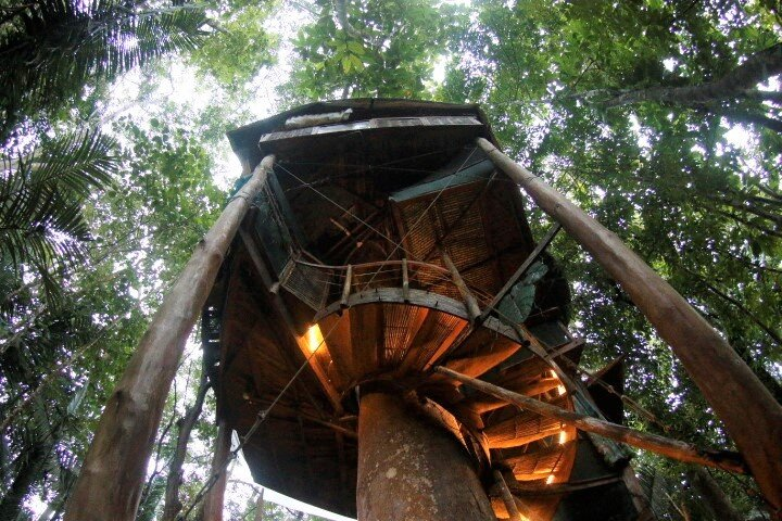 Corcovado National Parks Best Treehouse Adventure near Remote Beaches, aluguéis de temporada em Puerto Jimenes