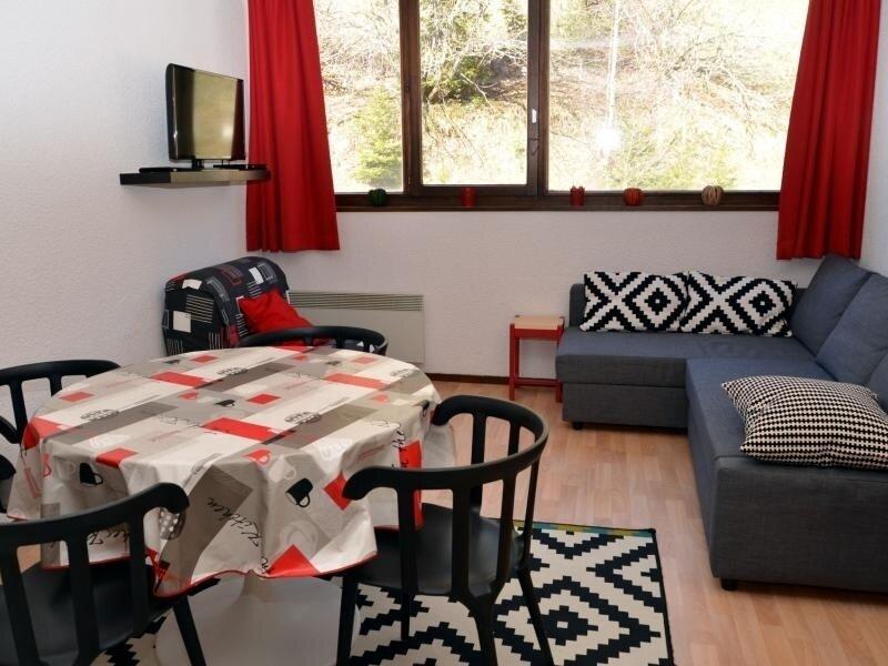 studio bien équipé proche des pistes, vacation rental in Flaine