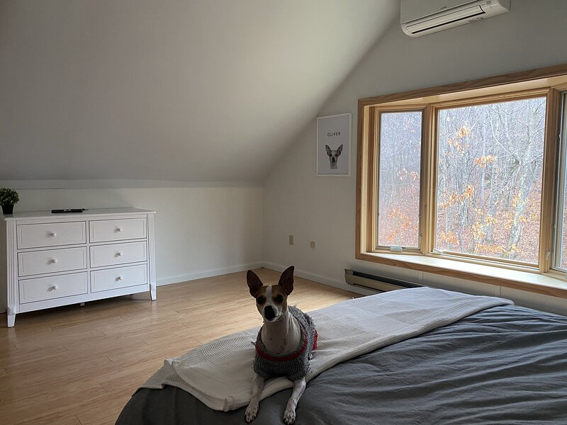 Renovated Cozy Catskills Getaway!, aluguéis de temporada em New Kingston