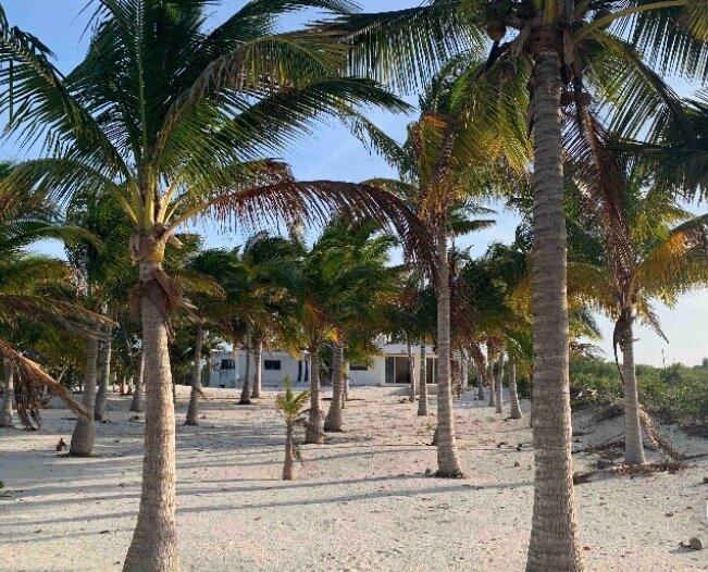 Beautiful beach house in Sancrisanto, a quiet, cozy,small town in Yucatan coast., holiday rental in San Crisanto