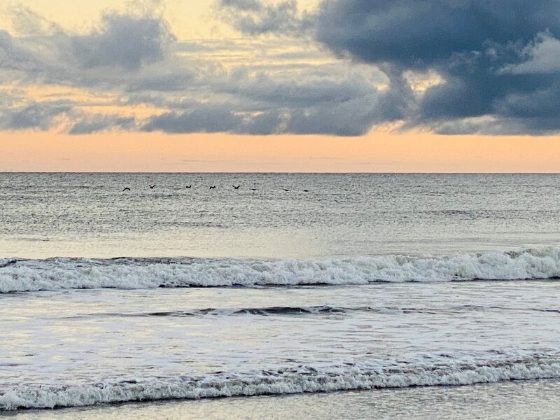 Outdoors,Sea,Ocean,Water,Nature