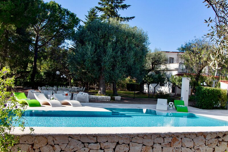 Pool view from the olive grove