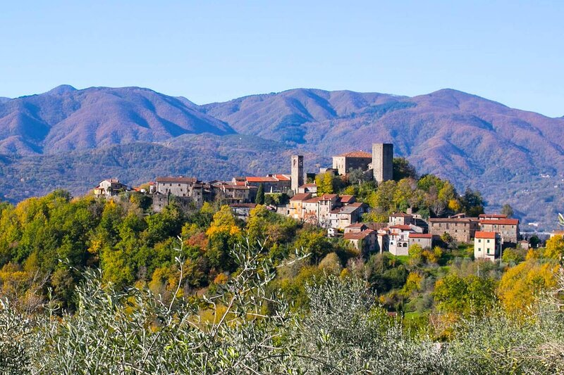 IN THE PICTURESQUE TUSCAN TOWN OF LICCIANA NARDI, holiday rental in Tornolo