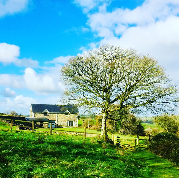 Romantic Cottage Countryside Escape with Hot Tub, vacation rental in Llangynin