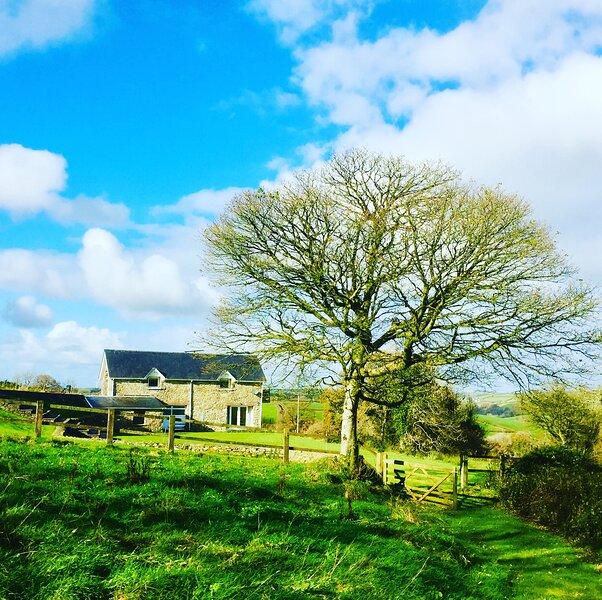 Romantic Cottage Countryside Escape with Hot Tub, alquiler vacacional en Carmarthen