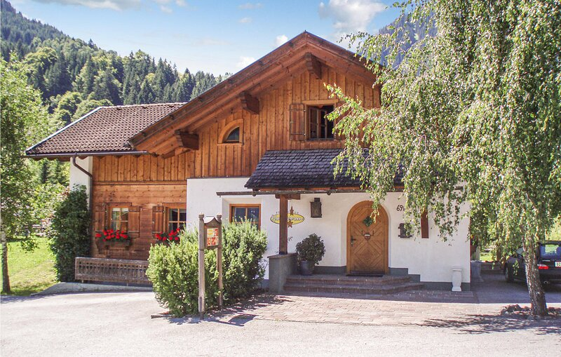 Haus Holzworm (AVO143), holiday rental in Sankt Gallenkirch