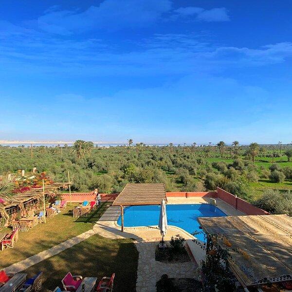Olive Tree Lodge, vacation rental in Al Fayyum