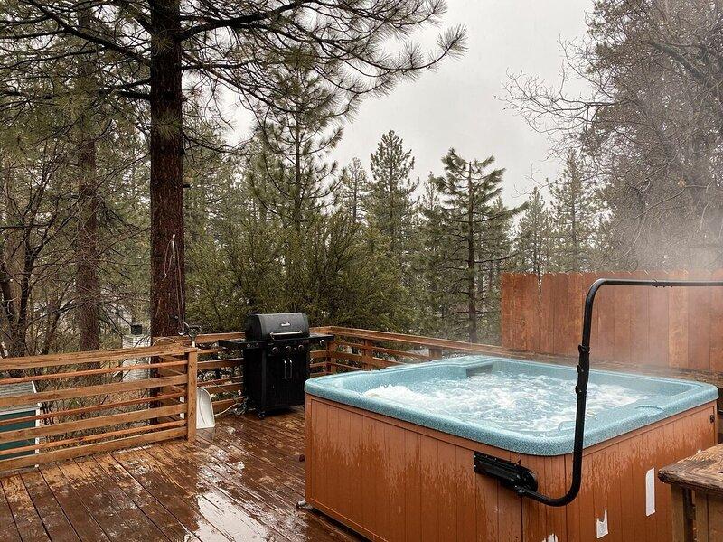 Jacuzzi,Hot Tub,Tub,Hardwood,Tree