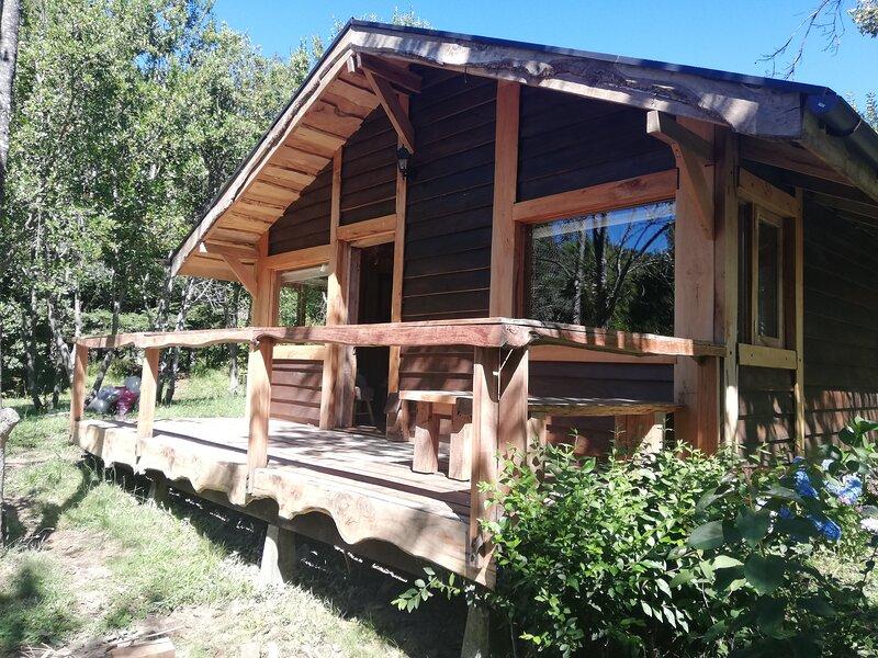Cabaña Rústica Pellín con río Trancura, vacation rental in Pichare