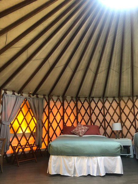 24ft Yurt The Robin Nest Glamping Yurt, holiday rental in Enderby