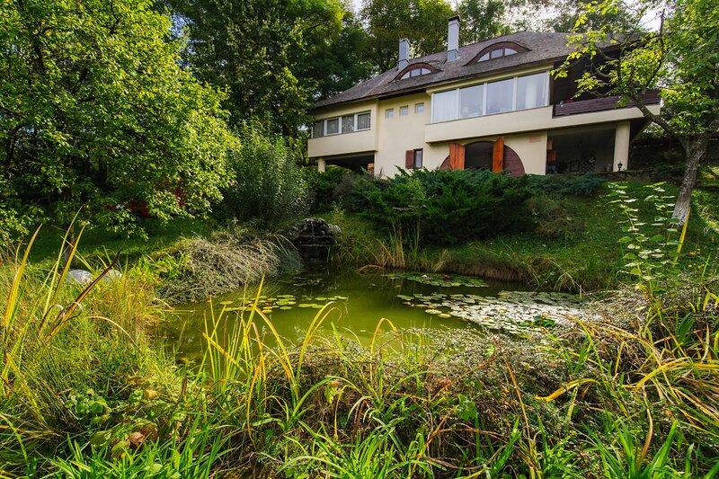 Villa Elisabeta - MontePalazzo Cerasu, location de vacances à Slanic
