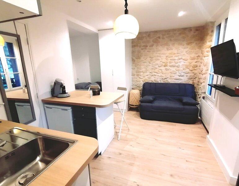Magnifique studio lumineux à 5 min de Paris, vacation rental in Malakoff