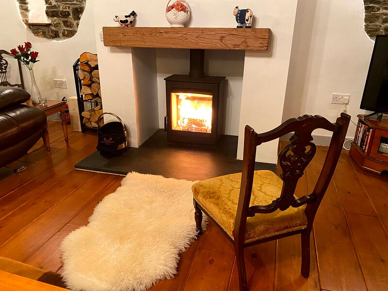 Weardale Byre Cottage, holiday rental in Rookhope