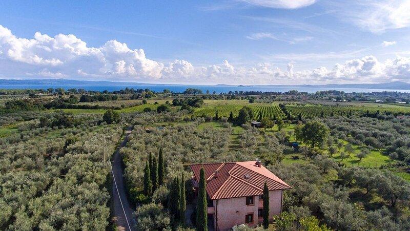Bolsenasee Landhausidylle im Olivenhain, vacation rental in San Lorenzo Nuovo