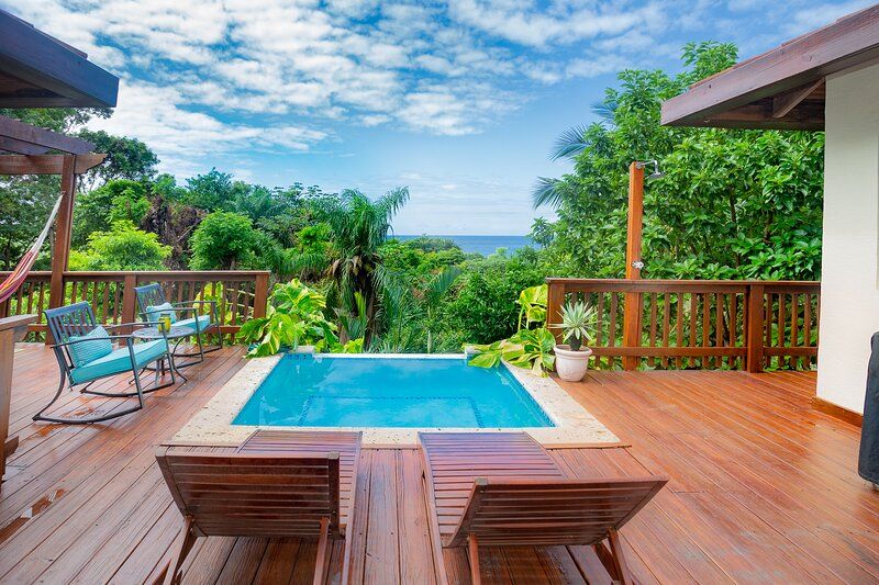 Private pool and great ocean view