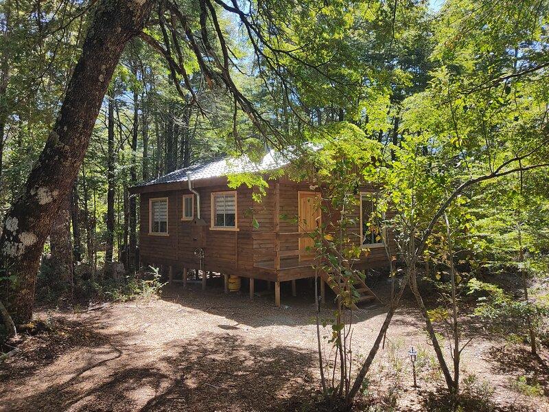 Hermosa cabaña en bosque nativo con río a 1 min de Parque Nacional Conguillio, casa vacanza a Malalcahuello