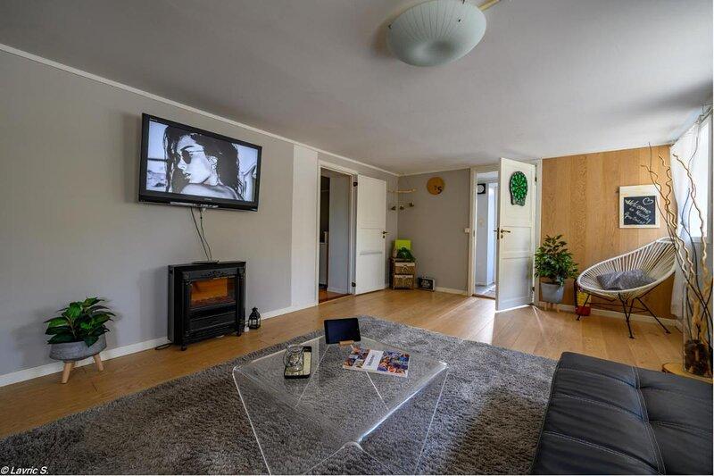 Nicolas Apartment 1 nice Cozy Central 2 Rooms, holiday rental in Bryne