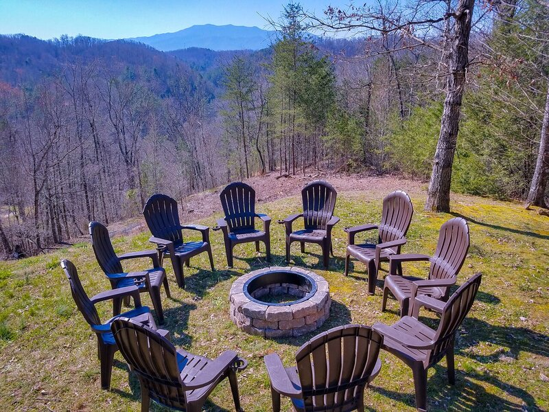 Furniture,Chair,Grass,Vegetation,Tree