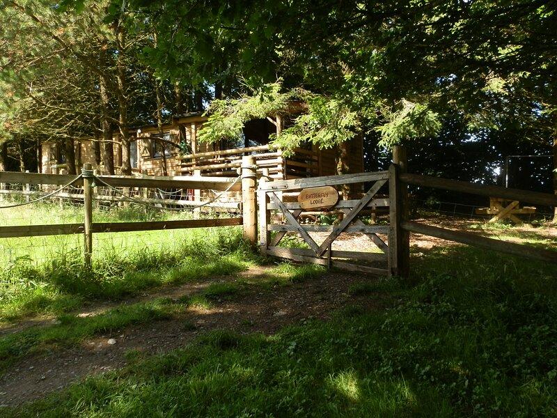 Butterfly Lodge – semesterbostad i Llandysul