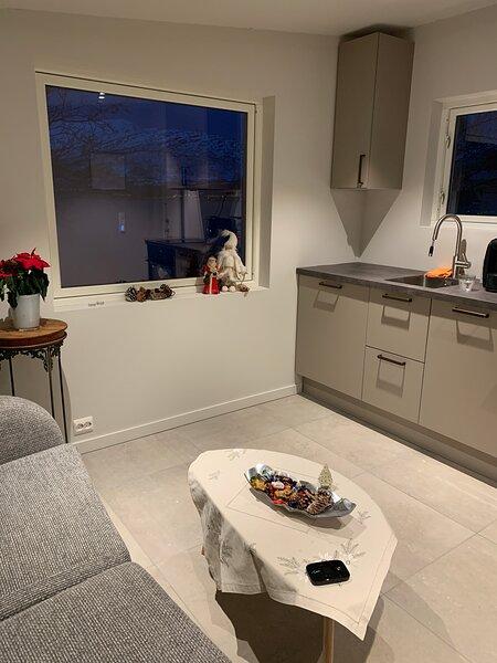 Fantastic holiday Apartment by the sea, alquiler vacacional en Norte de Noruega