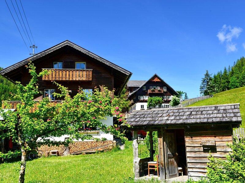 Knaushäusl (RMU204), holiday rental in Filzmoos