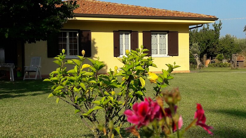Villa with pool, big garden arounded by olives trees, near sea., vakantiewoning in Brattiro
