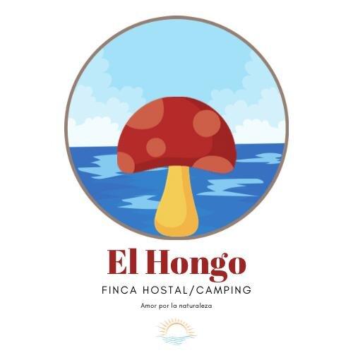 Eco Finca El Hongo Hostal/Camping, aluguéis de temporada em Capurgana