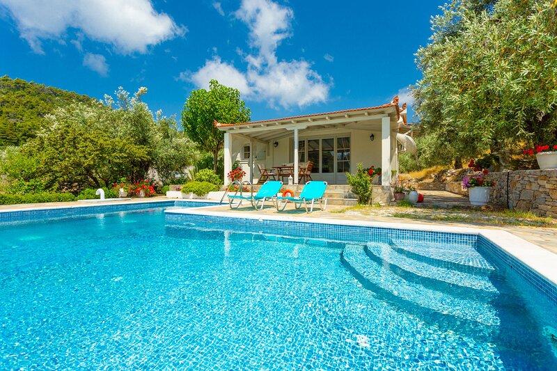 Villa Tassoula: Large Private Pool, Walk to Beach, WiFi, holiday rental in Agios Petros