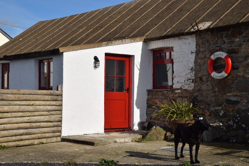 Tilley's Cottage, holiday rental in St Davids