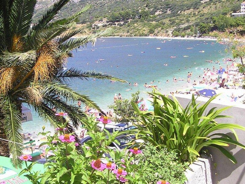 Katja - 10 m from beach: R3 Matej(4) - Gradac, casa vacanza a Gradac