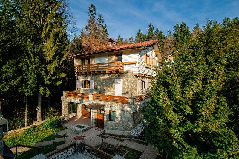 Chalet Titulescu - MontePalazzo Sinaia, holiday rental in Pietrosita