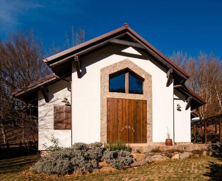 MontePalazzo Valiug - Villa for Groups, vacation rental in Borlova