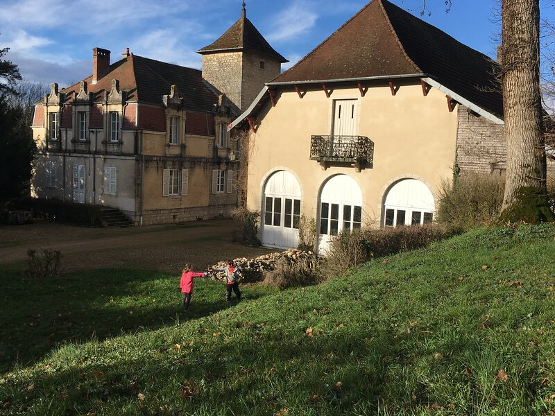 Charming XVIII/XIX C. Château in walled grounds, holiday rental in Salins-les-Bains