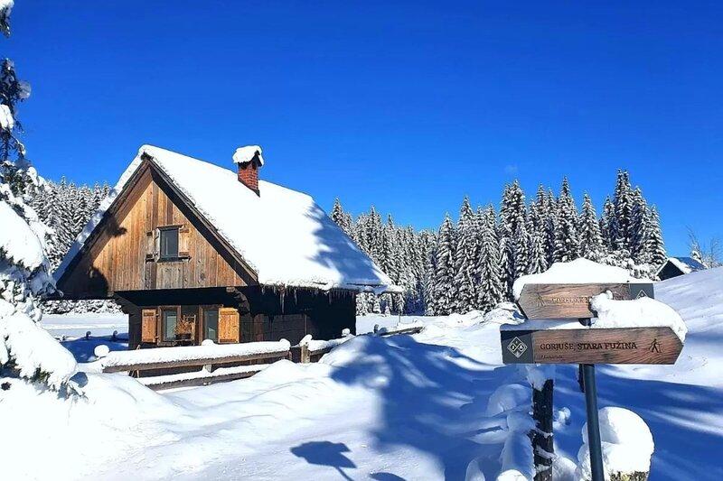 Zala's Mountain Paradise, holiday rental in Bohinjska Bistrica