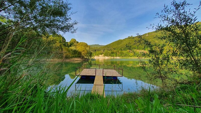 Cabana Lac Paltinu si Padure Valea Doftanei, holiday rental in Pietrosita