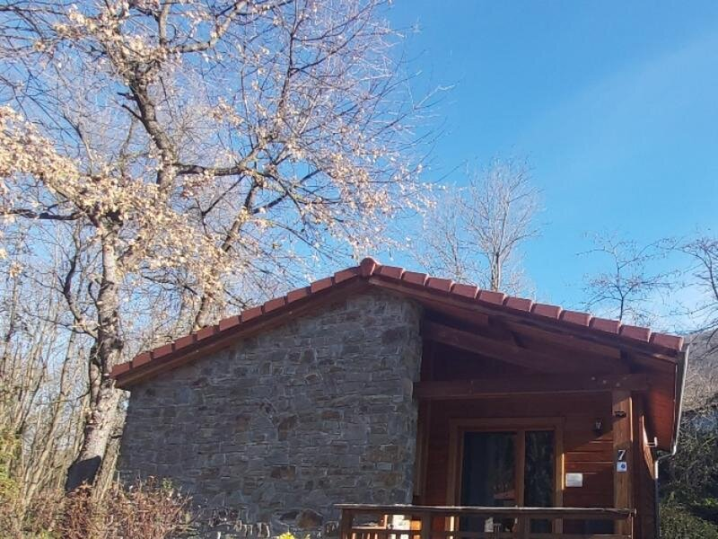 IRIS DES PYRENEES  n° 7, holiday rental in Serres-sur-Arget