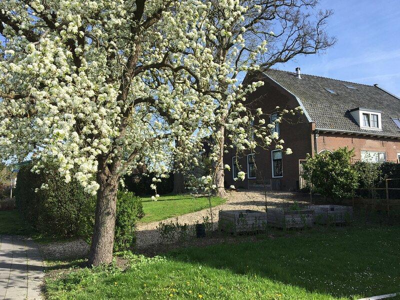 De Lindebloesem, holiday rental in Buren