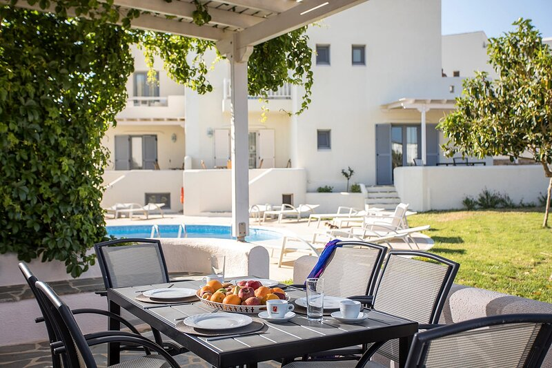 Naxos Relaxing Sea View Villa with Pool 6, holiday rental in Agia Anna