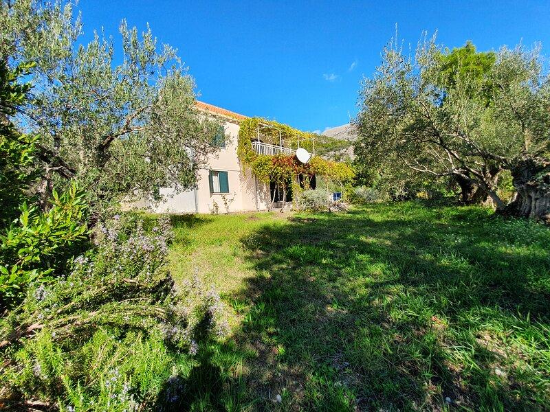 Hidden seaside house in Dubrovnik Riviera - Slano, holiday rental in Slano