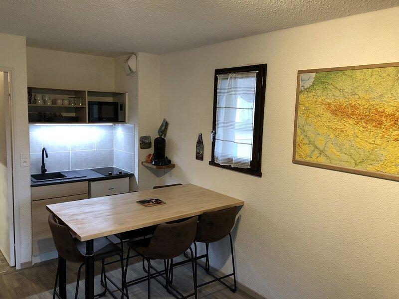 Studio Proximité de La Mongie, holiday rental in Banios