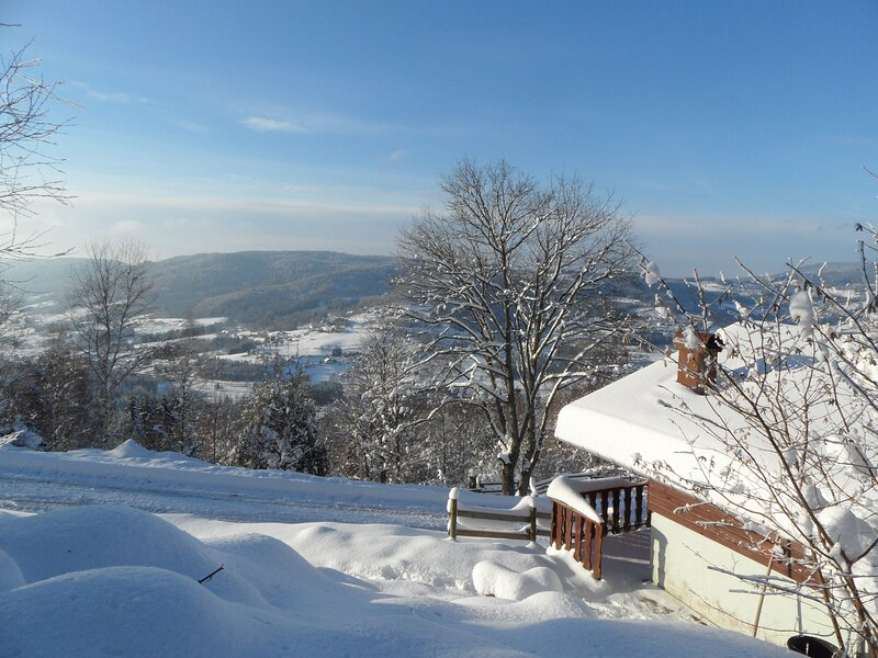 Beautiful chalet with shared pool, holiday rental in Le Tholy